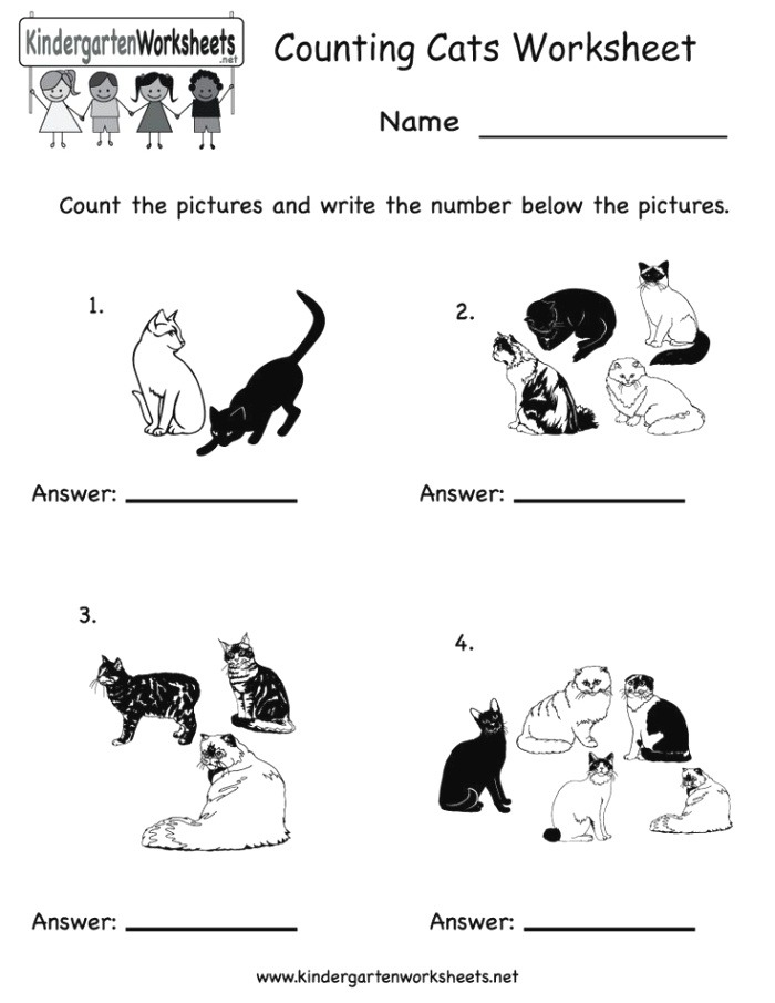 17 Best Images About Math Worksheets On Pinterest