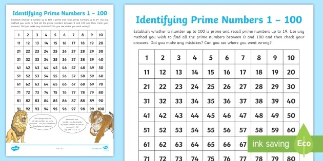 Identifying Prime Numbers to 100 Worksheet Teacher Made