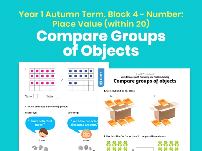 Y1 Autumn Term – Block 4 Pare Groups Of Objects Maths