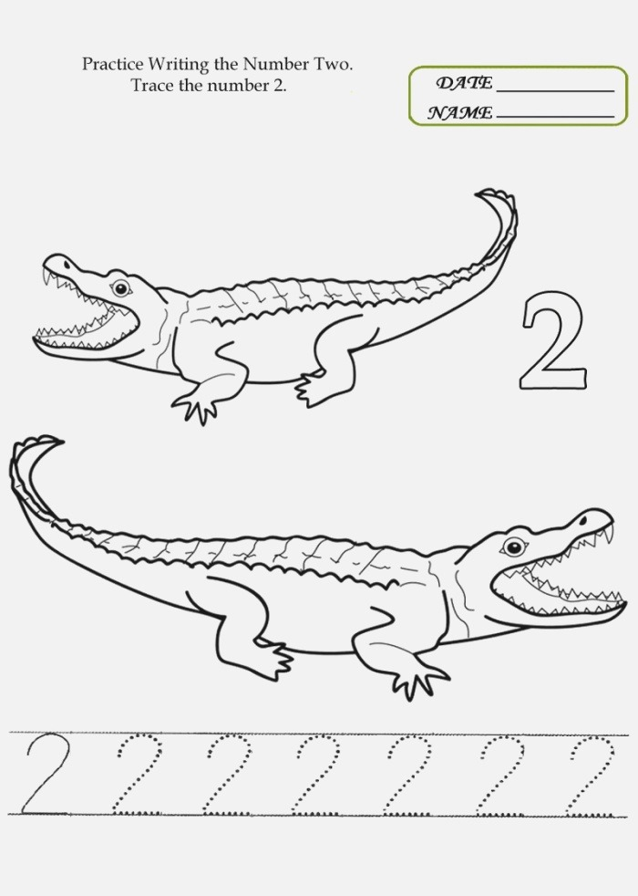 Number 2 Trace Page Printable Coloring Pages for Kids