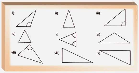 Worksheet On Polygons Types Of the Triangles