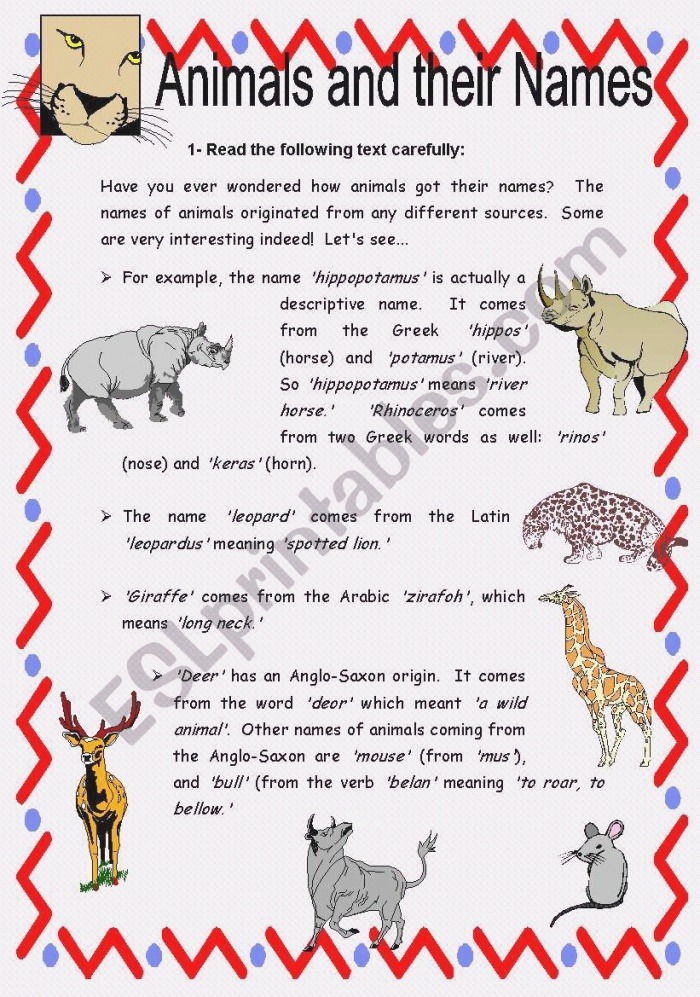 Animals and their Names Reading Prehension with Key