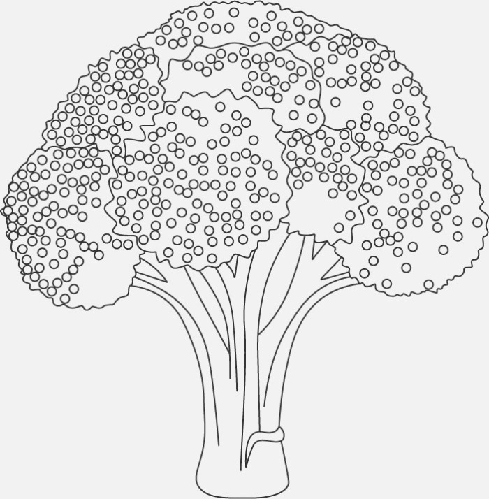 Broccoli Coloring Sheet Food Coloringsheets Ve Able
