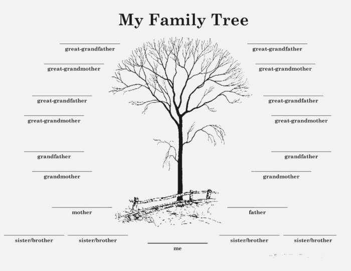 Download Family Tree Template 13