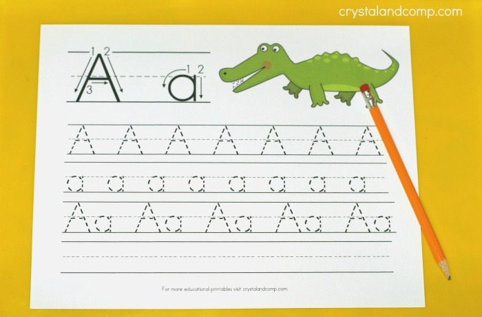 Handwriting Practice for Kids A is for Alligator