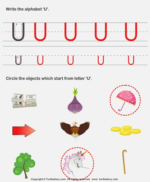 Identify Words that Start with U Worksheet Turtle Diary
