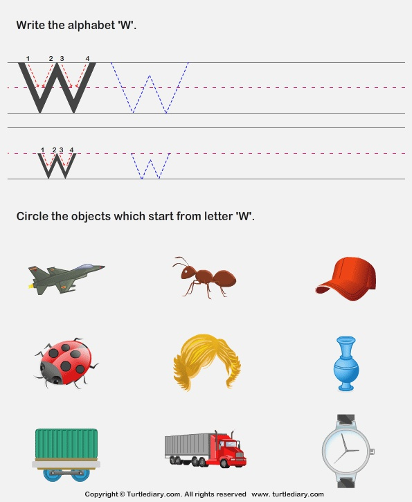 Identify Words that Start with W Worksheet Turtle Diary