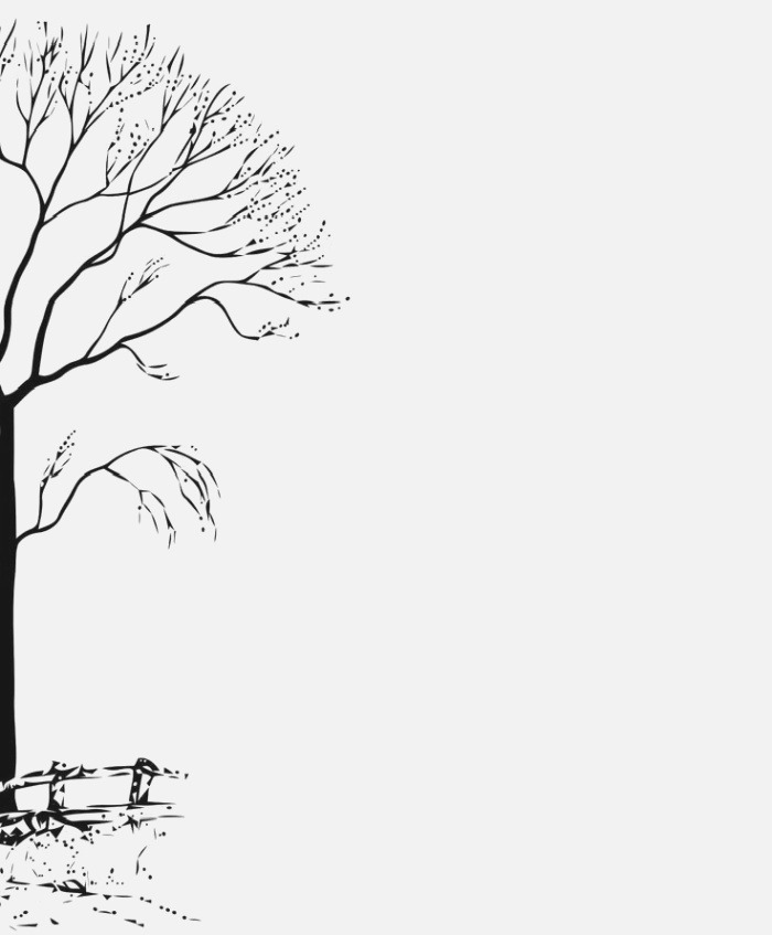 Tree Off to Left Side Blank Pages Pinterest