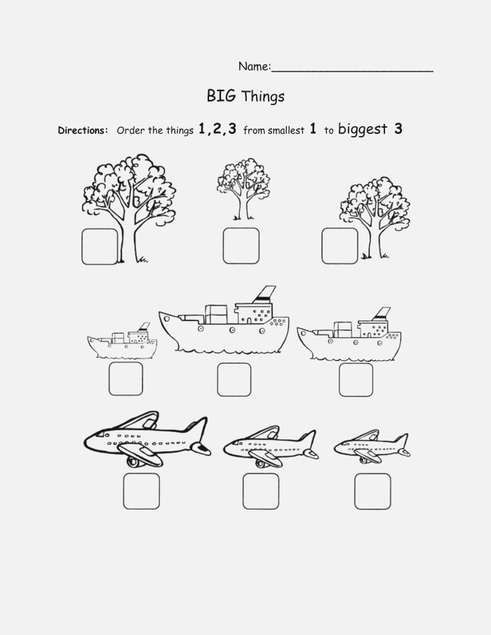 14 Best Of Big and Small sorting Worksheet
