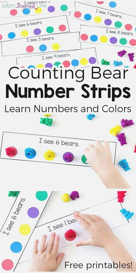 Counting Bears Number and Color Activity