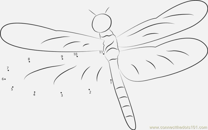 Dragonfly Dot to Dot Printable Worksheet Connect the Dots
