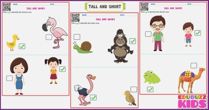 Free Printable Math Tall and Short Worksheets Here some