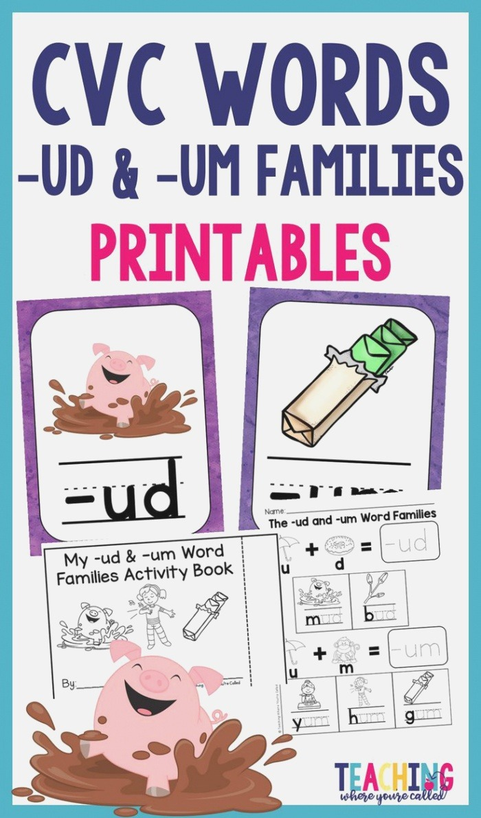 Help Your Students Learn their Cvc Words with This