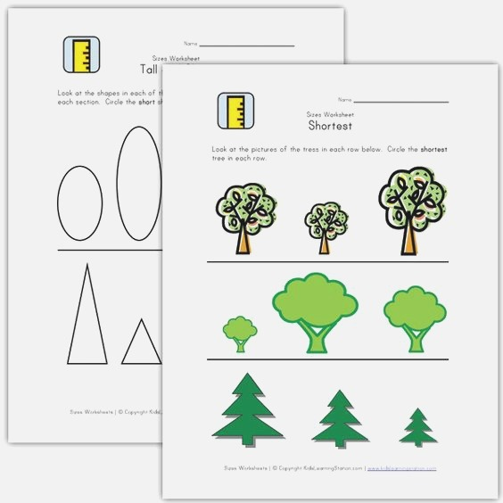 Kids Learn Height Tall and Short Worksheets