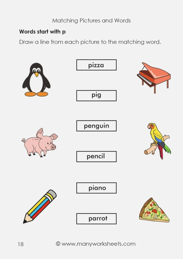 Matching Pictures and Words Starting with Letter P