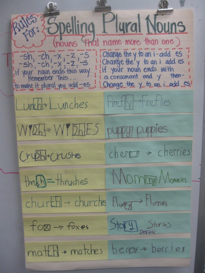 Noun Rules Chart Related Keywords and Suggestions Noun Rules