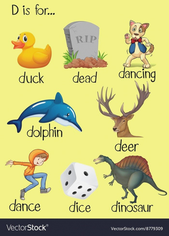 Objects that Start with D Words that Begin with Letter D
