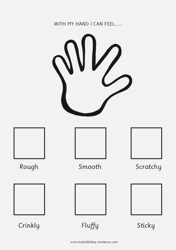 the Five Senses touch