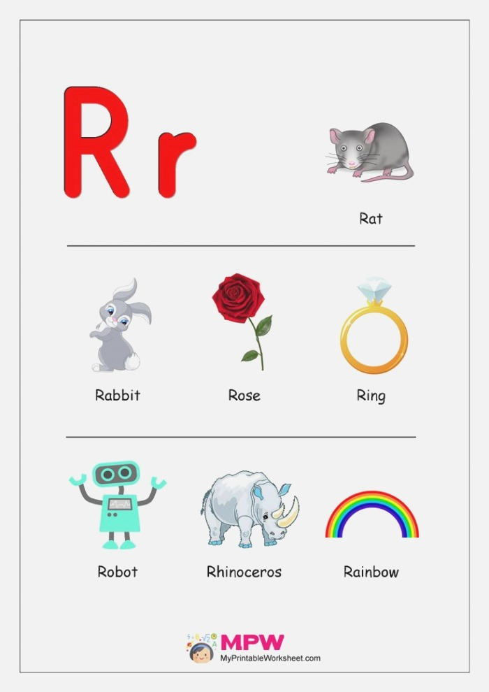 Things that Start with R Alphabet