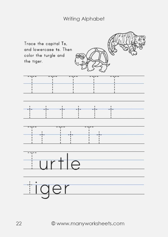 Tracing Uppercase T and Lowercase T