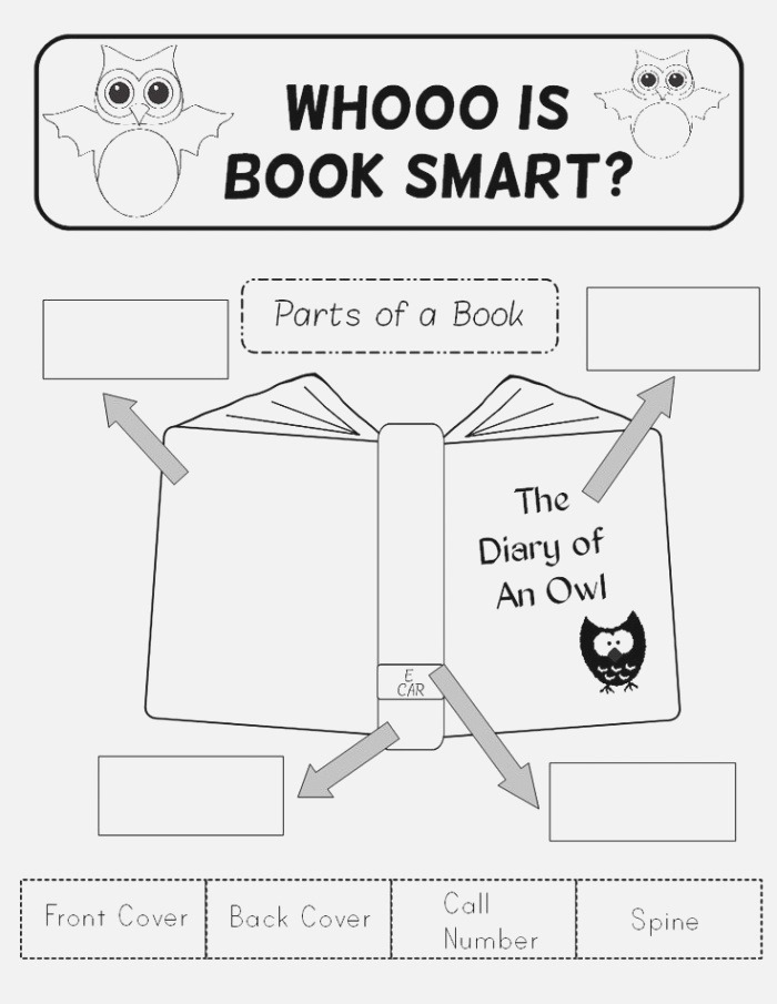 15 Best Of Book Parts Title Page Worksheet Parts