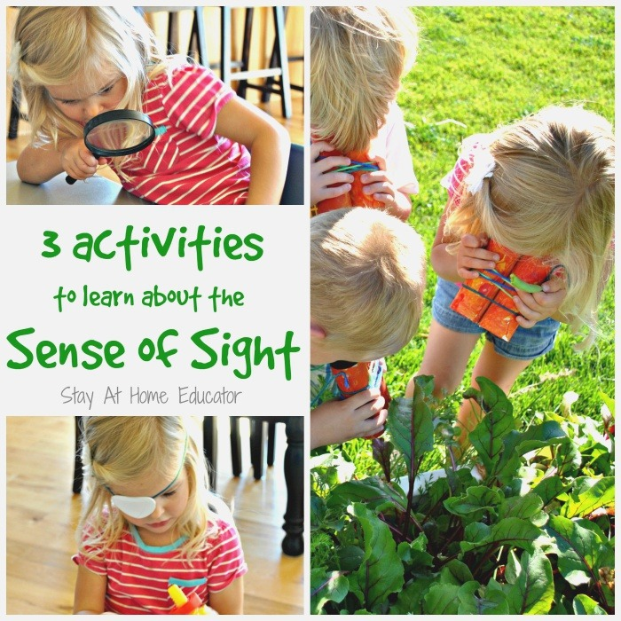 3 Activities to Learn About the Sense Of Sight Preschool