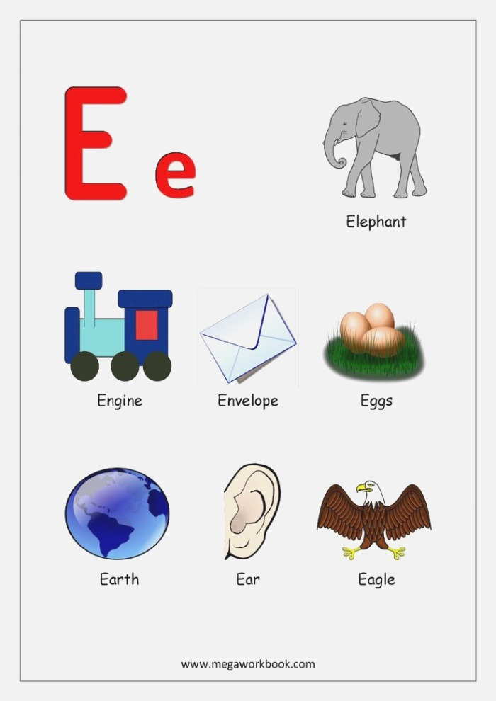 Alphabets Starting with Letter E English Worksheets